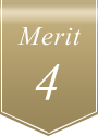 Merit 4